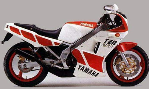 Download Yamaha Tzr-250 repair manual